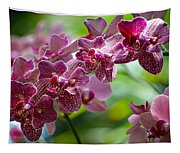 Pink Elegance Tapestry