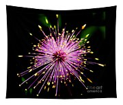 Pink Fireworks  Tapestry