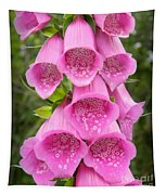 Pink Foxglove Tapestry