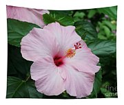 Pink Hibiscus #3 Tapestry