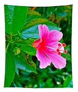 Pink Hibiscus Near Celadon Factory In Chiang Mai-thailand Tapestry