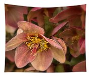 Pink Lenten Rose Tapestry