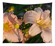 Pink Lily At Sunset 2 Tapestry