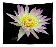 Pink N Yellow Water Lily Too Tapestry