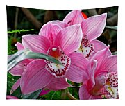 Pink Orchid Tapestry