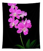 Pink Orchids 9 Tapestry