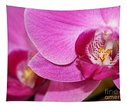 Pink Orchids Tapestry