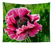 Pink Poppy Tapestry