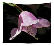 Pink Rhododendron Blossom Tapestry