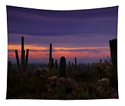 Pink Sunrise  Tapestry