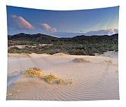 Pink Sunset At The Desert Tapestry