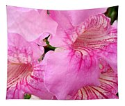 Pink Thunbergia Tapestry