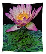 Pink Tipped Beauty Tapestry