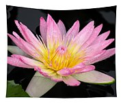 Pink Water Lily Tapestry