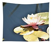 Pink Waterlily Tapestry