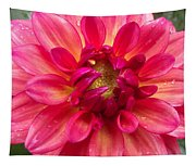 Pink Zinnia Flower Upclose Tapestry