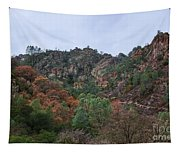 Pinnacles National Park Tapestry
