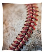 Pitchers Stitches Tapestry