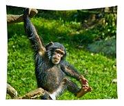 Playful Chimp Tapestry