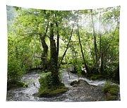 Plitvice Lakes Tapestry