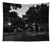 Plum Street To Franklin Square Tapestry