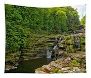 Poconos Ledges Waterfall Tapestry