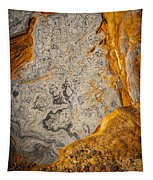 Point Lobos Abstract 12 Tapestry