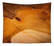 Point Lobos Abstract 8 Tapestry