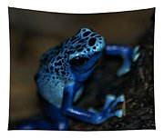 Poisonous Blue Frog 02 Tapestry
