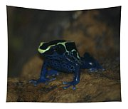 Poisonous Frog 02 Tapestry