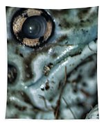 Poisonous Frog Eye Tapestry