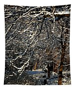 Polar Vortex Beauty Tapestry