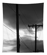 Poles And Sunsets In Black And White Tapestry