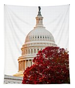 Politics Seeing Red Tapestry
