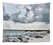 Ponce Inlet Mood Tapestry