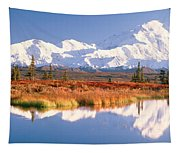 Pond, Alaska Range, Denali National Tapestry