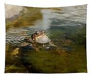 Pond Song Tapestry