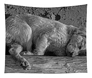 Pooped Puppy Bw Tapestry