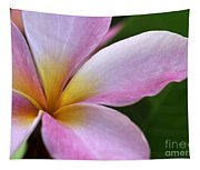 Pop Of Pink Plumeria Tapestry