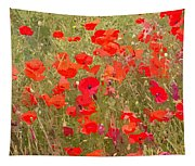 Poppies Vii Tapestry