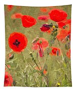 Poppies X Tapestry