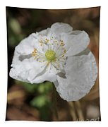 Poppy From The Angel's Choir Mix Tapestry