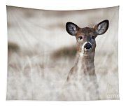 Portrait Of A Fawn Tapestry