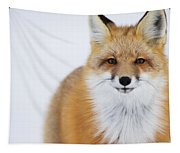 Portrait Of Red Foxchurchill Manitoba Tapestry