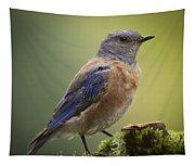 Posing Bluebird Tapestry