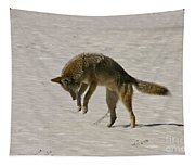 Pouncing Coyote Tapestry