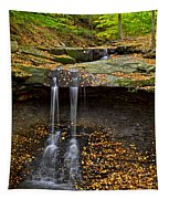 Powerful Trickle Tapestry