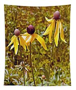 Prairie Coneflowers In Pipestone National Monument-minnesota  Tapestry