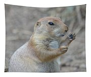 Prairie Dog Cleaning His Teeth Tapestry
