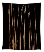 Prairie Grass Number 3 Tapestry